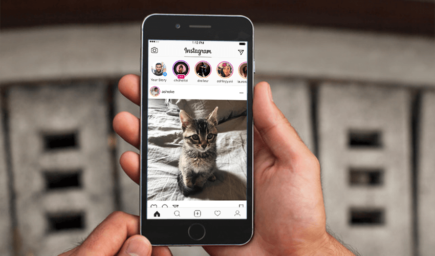 3 Ways To Download Instagram Profile Picture In Full Size Techzillo