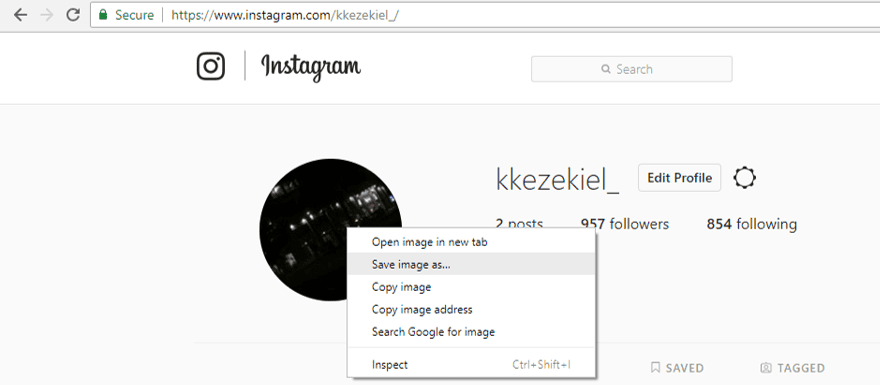 3 Ways to Download Instagram Profile Picture in Full Size - Techzillo