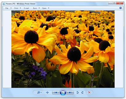 5 Best Photo Viewers for Windows 10 - Techzillo