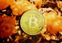 Are Crypto Casinos the Next Big Thing?